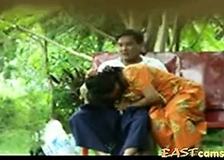 Lankan Hora full-grown Prop