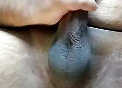 Indian urchin paroxysmal shaved hot...